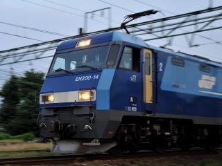 Dsc_0120nx2b